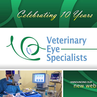 Veterinary Eye Specialists: 10th Anniversary Postcard