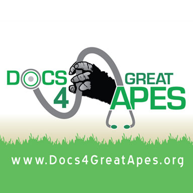 Docs 4 Great Apes: Business Card